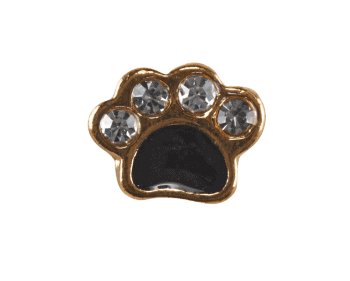 Paw Print - Gold and Black